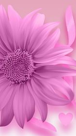 21750_wallpapers | flower | iphone | android